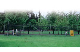 70 Foot Frame, 5 standing posts - Forelle American Sports Equipment