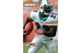 Poster 4028 Dolphins - Brown - Forelle American Sports Equipment